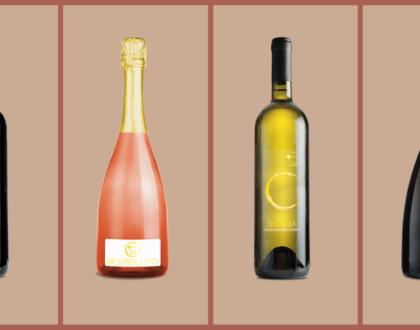 evento degustazione vini